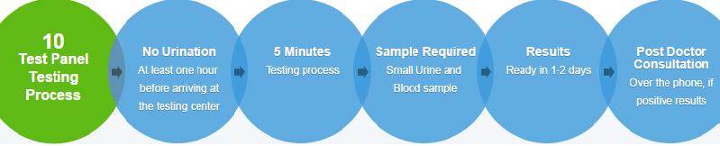 10 test panel testing process